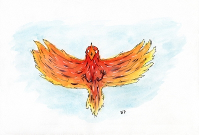 Seth D Nelson Bird For Web